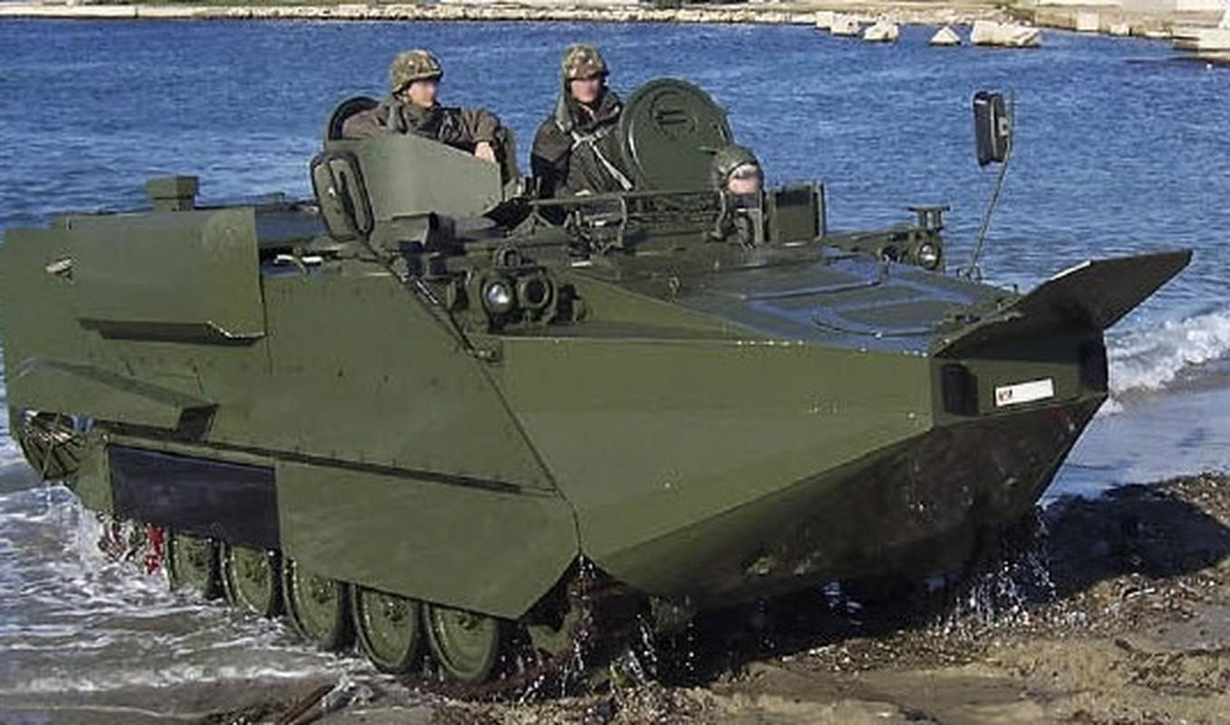 Viet Nam co the cai tien M113 dung cho hai quan danh bo?-Hinh-8