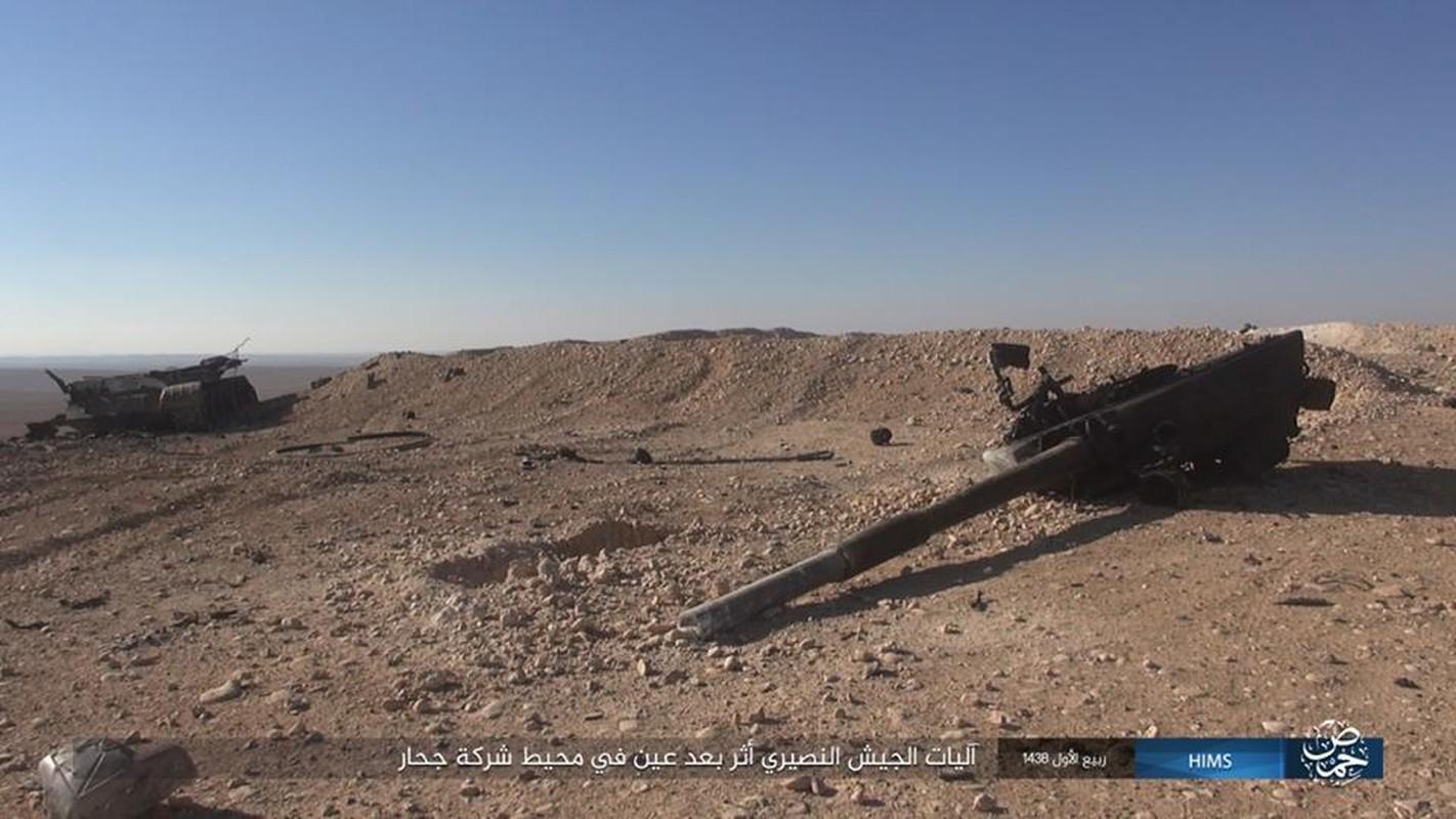 Xot xa loat vu khi Quan doi Syria vut lai Palmyra-Hinh-10