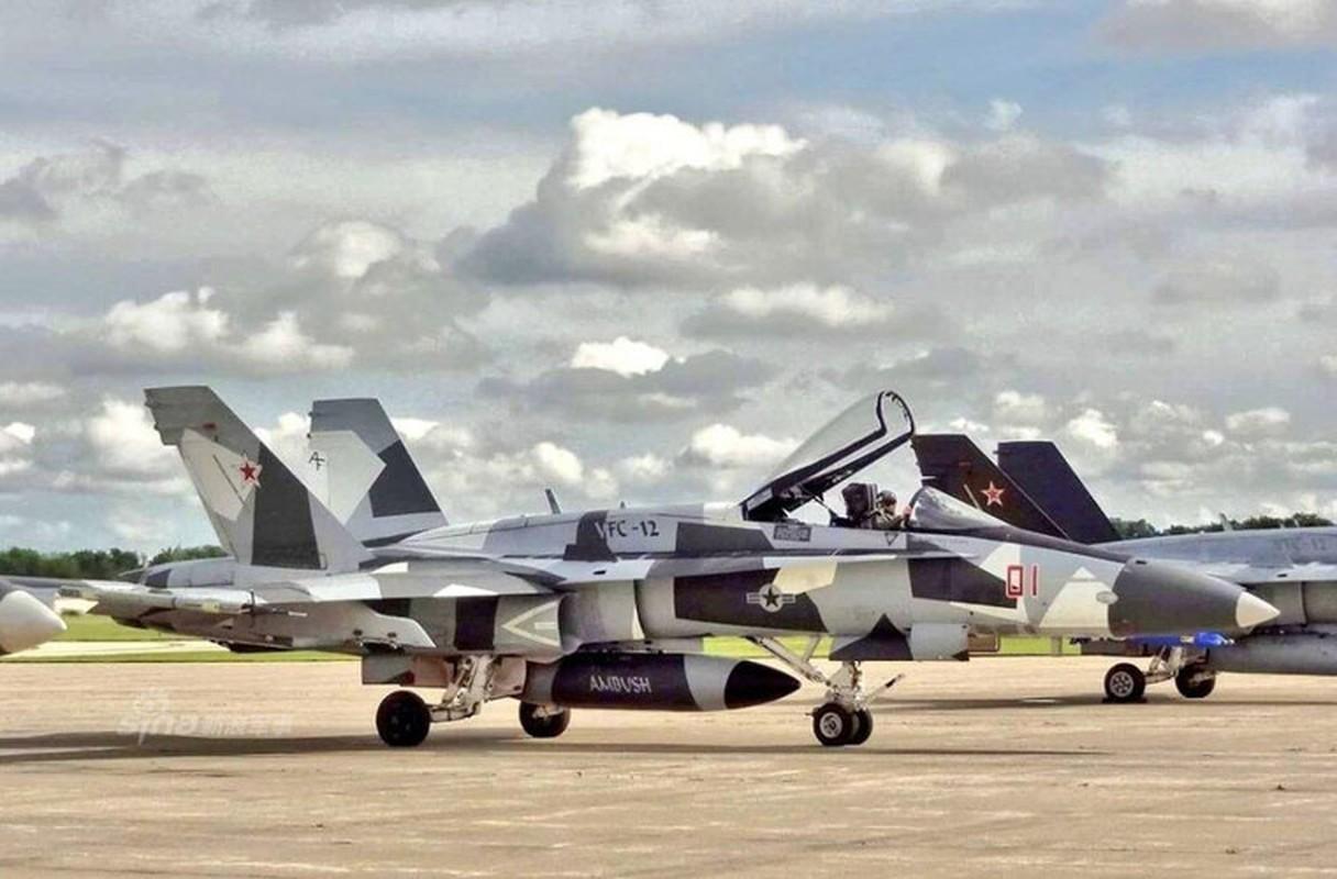 My dinh lam gi khi son F/A-18 giong het Su-34 Nga?-Hinh-3
