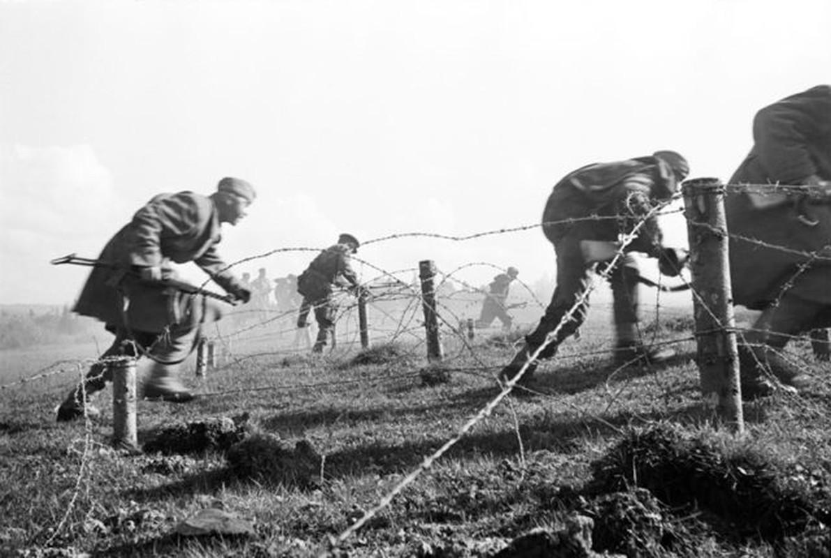 Khoc liet khung khiep ben trong mat tran Stalingrad (2)-Hinh-8