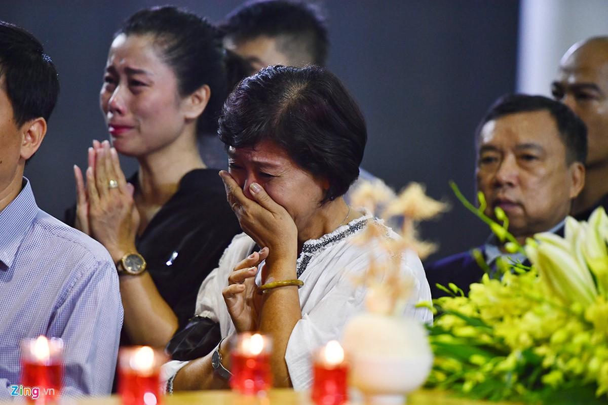 Lanh dao Dang, Nha nuoc va ban be tien biet giao su Phan Huy Le-Hinh-17
