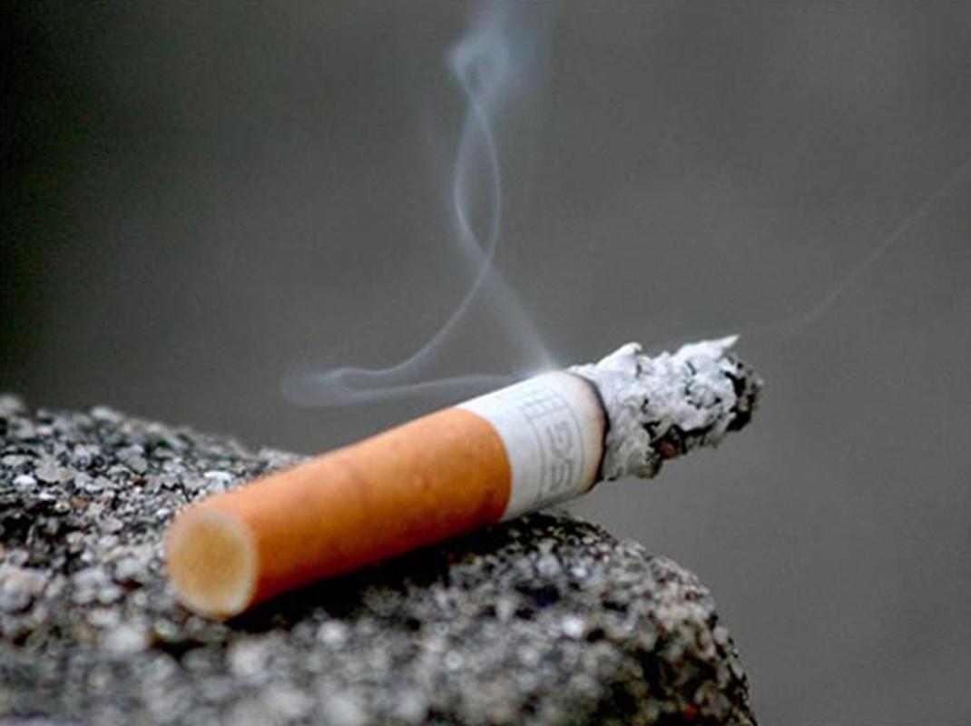 Thục phảm giúp giải dọc nicotin chỉ trong 24 gio