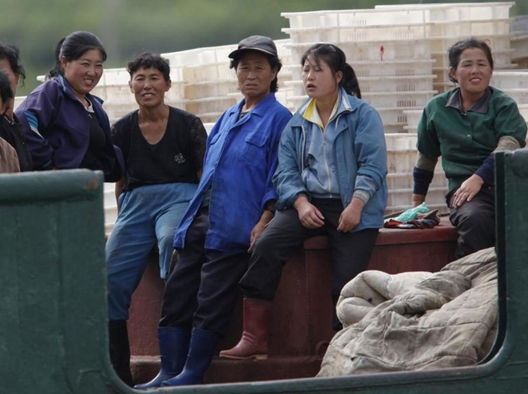 Ve dep cua phu nu Trieu Tien trong lao dong-Hinh-9
