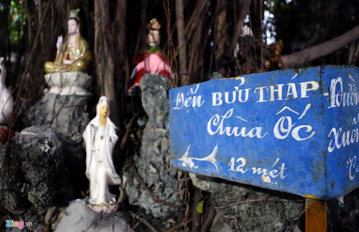 Ngoi chua lam bang vo oc, san ho doc nhat o Viet Nam-Hinh-9