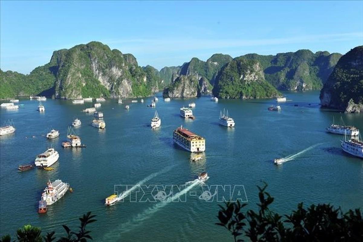 Chiem nguong Vinh Ha Long - noi don doan Lanh dao Trieu Tien-Hinh-2