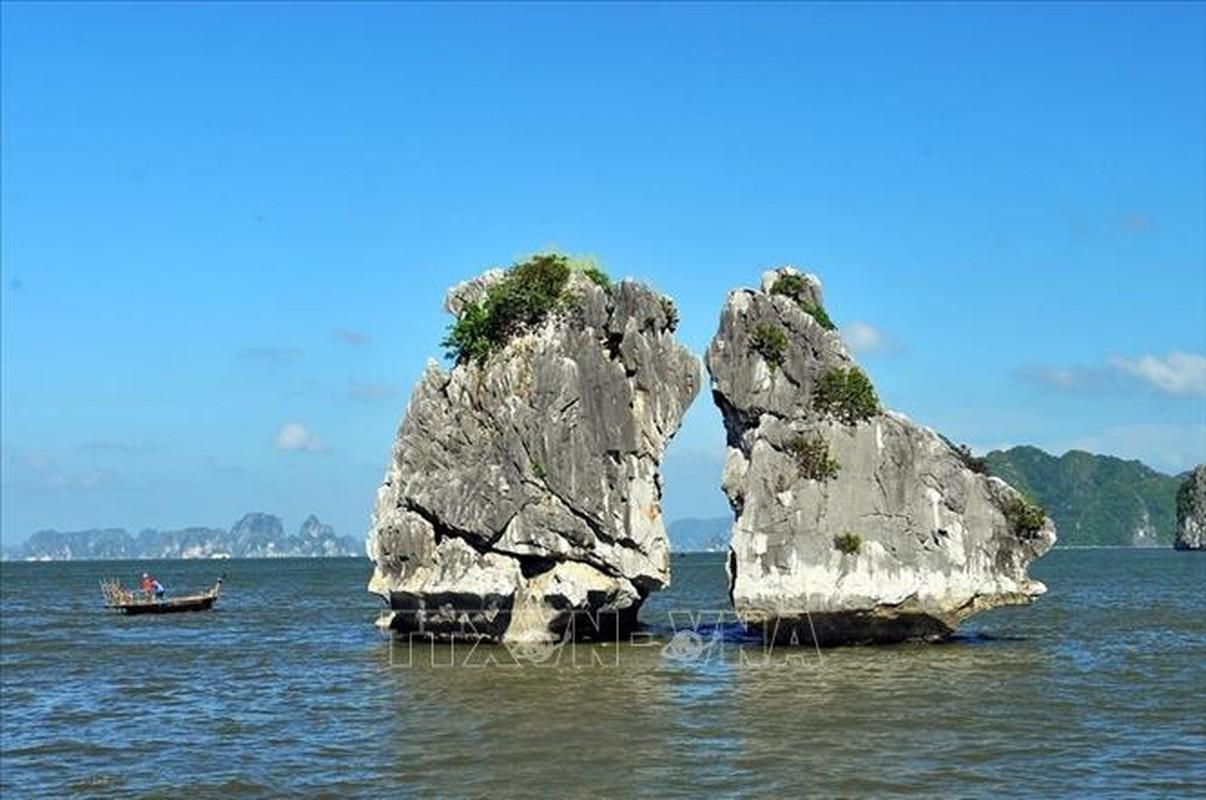 Chiem nguong Vinh Ha Long - noi don doan Lanh dao Trieu Tien-Hinh-3