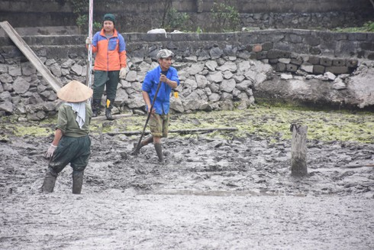 Nhung hinh anh ngay dau tien khai quat bai coc tai Dam Thuong-Hinh-4