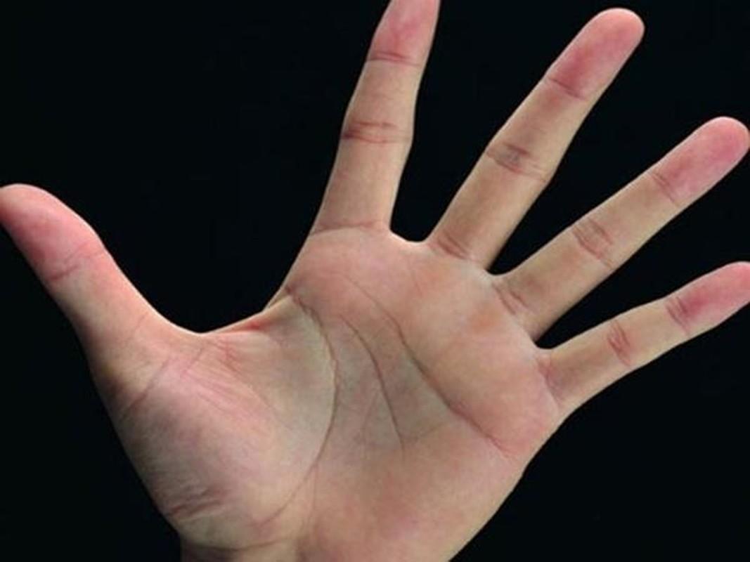 6 tuong ban tay bao hieu ban la nguoi phu quy, giau sang tron doi-Hinh-3