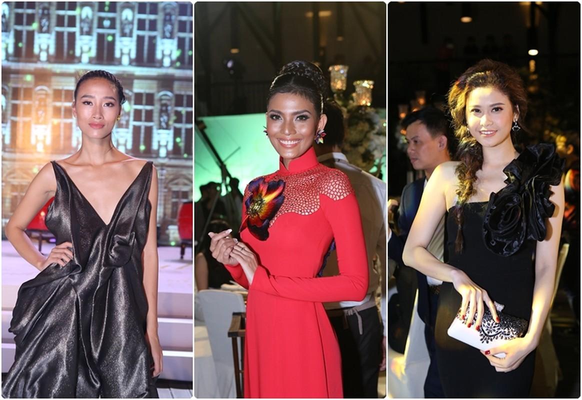 Ngoi sao TVB Ho Hanh Nhi toa sac giua dan sao Viet-Hinh-8