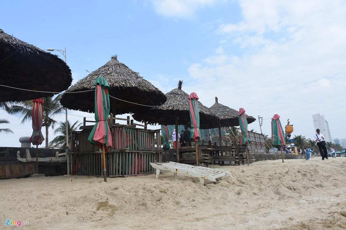 Can canh bai bien Da Nang keu cuu-Hinh-8