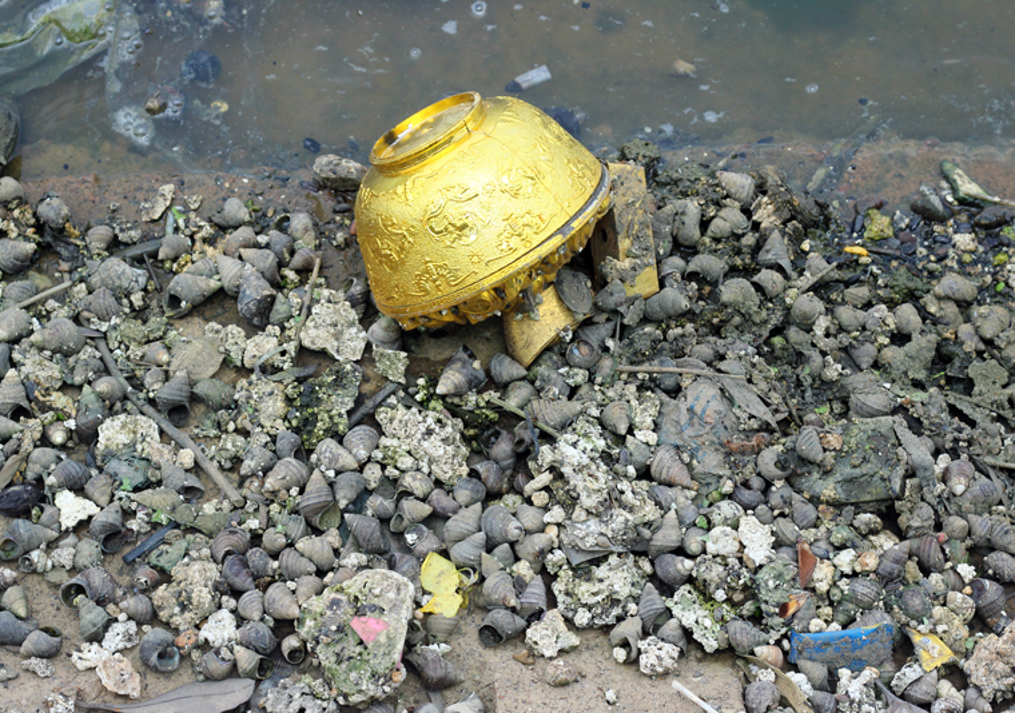 Anh: Kinh hoang canh bat huong va rac ban ngap ho Den Lu - Ha Noi-Hinh-16
