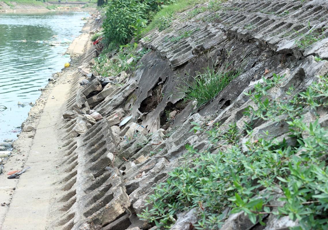 Anh: Kinh hoang canh bat huong va rac ban ngap ho Den Lu - Ha Noi-Hinh-18
