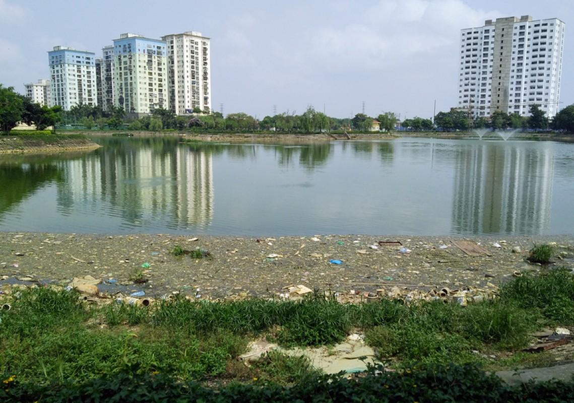 Anh: Kinh hoang canh bat huong va rac ban ngap ho Den Lu - Ha Noi-Hinh-2