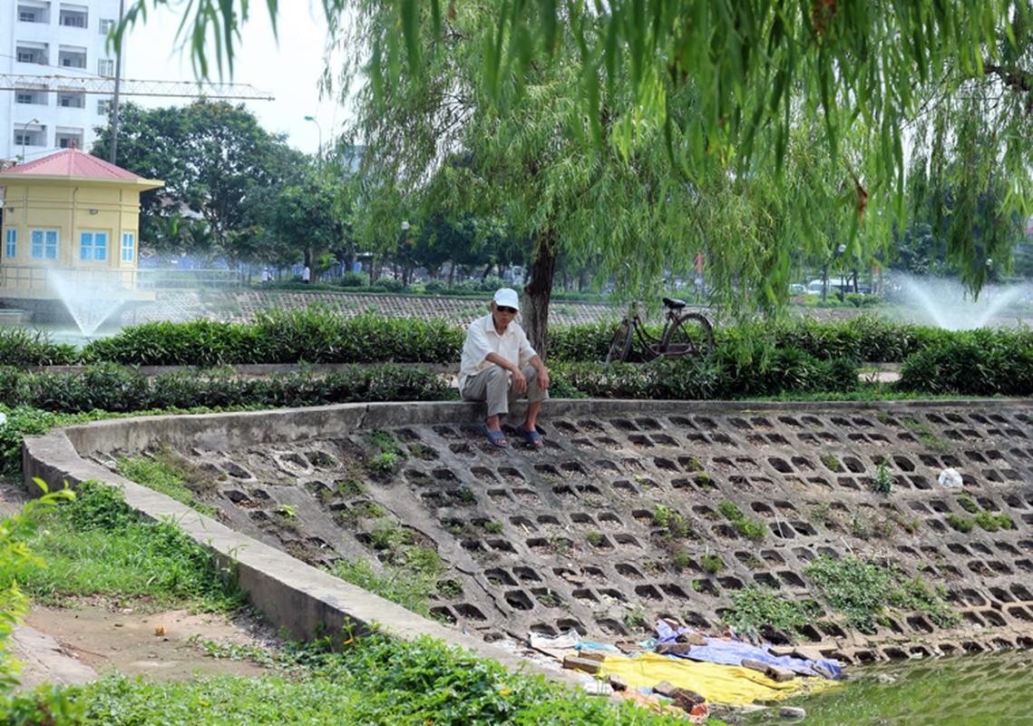 Anh: Kinh hoang canh bat huong va rac ban ngap ho Den Lu - Ha Noi-Hinh-22