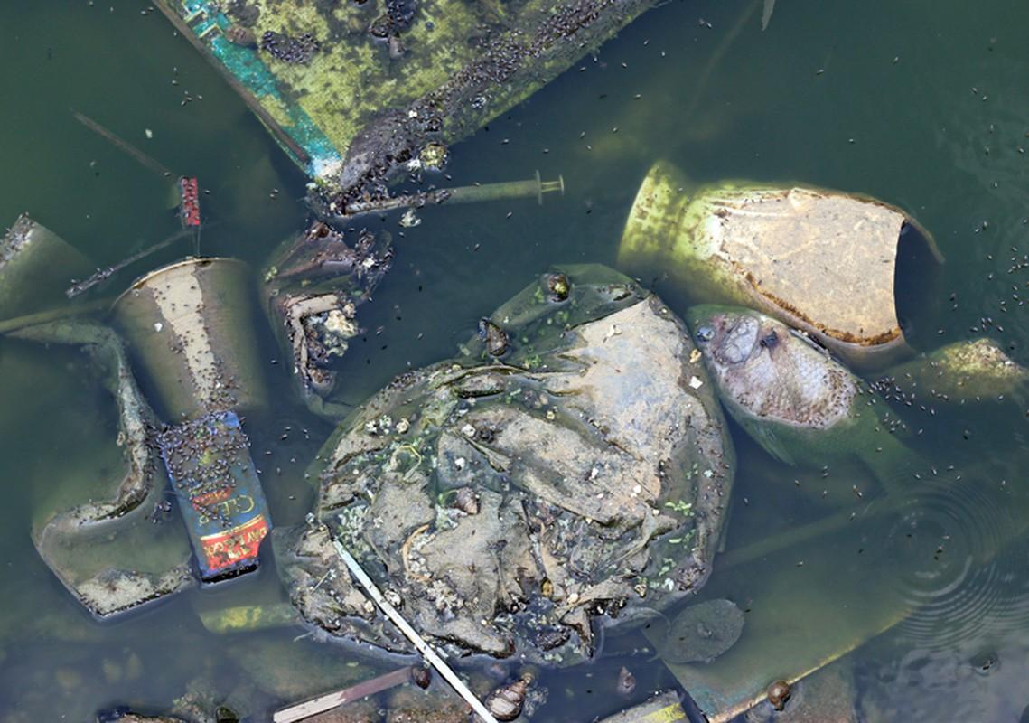 Anh: Kinh hoang canh bat huong va rac ban ngap ho Den Lu - Ha Noi-Hinh-4