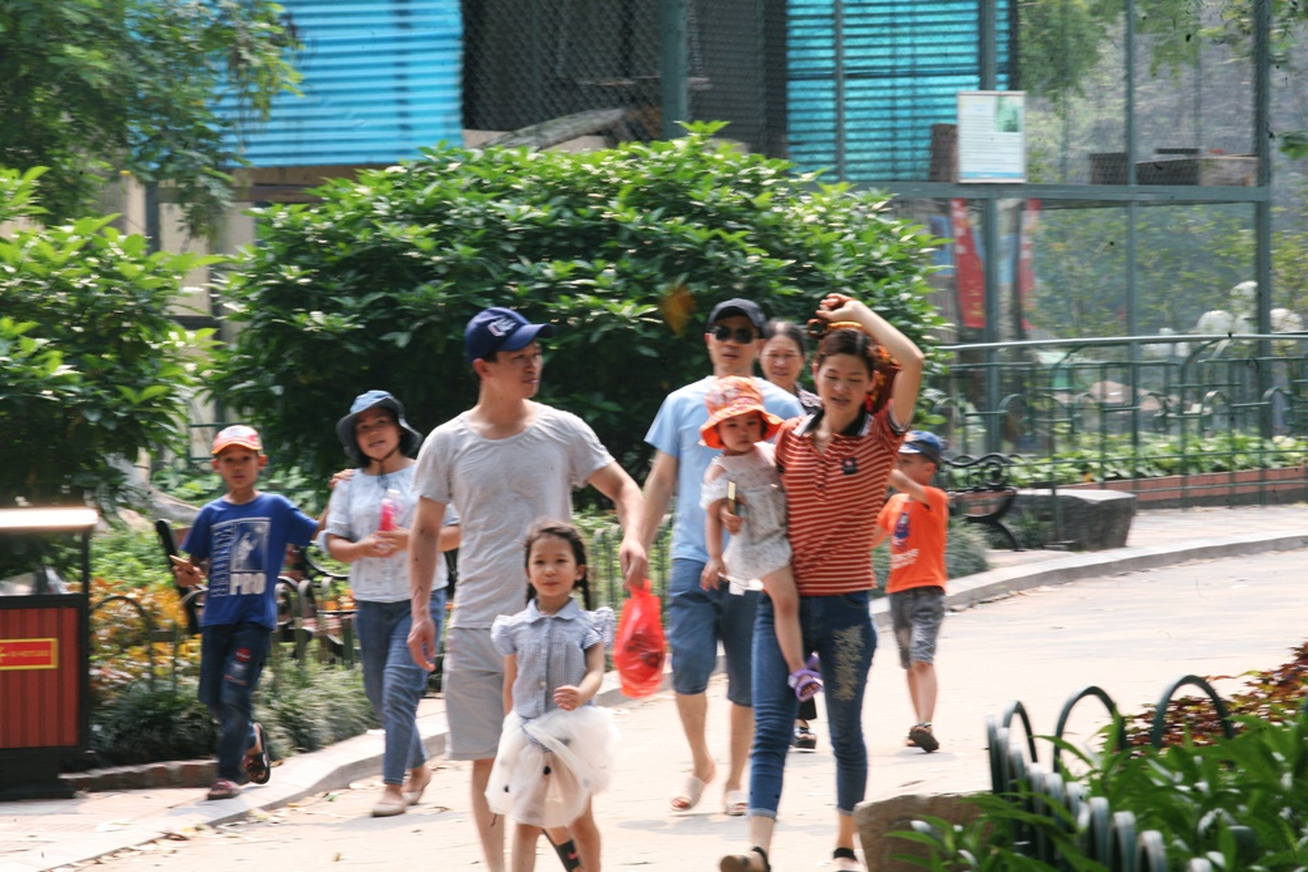 HN: Dan vat vuong, rac thai vay kin vuon thu ky nghi 30/4 - 1/5-Hinh-4