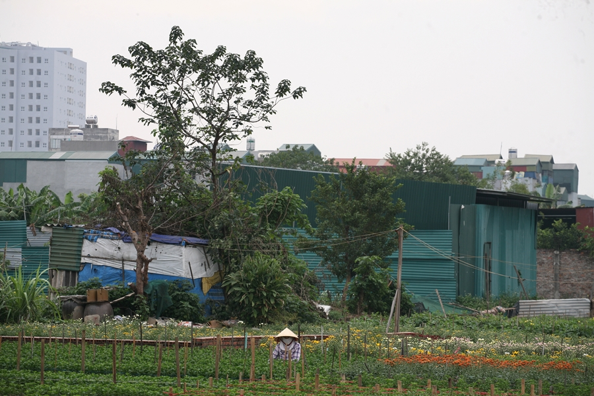 Can canh hang loat cong trinh xay dung trai phep tren dat nong nghiep o Khuong Dinh-Hinh-2