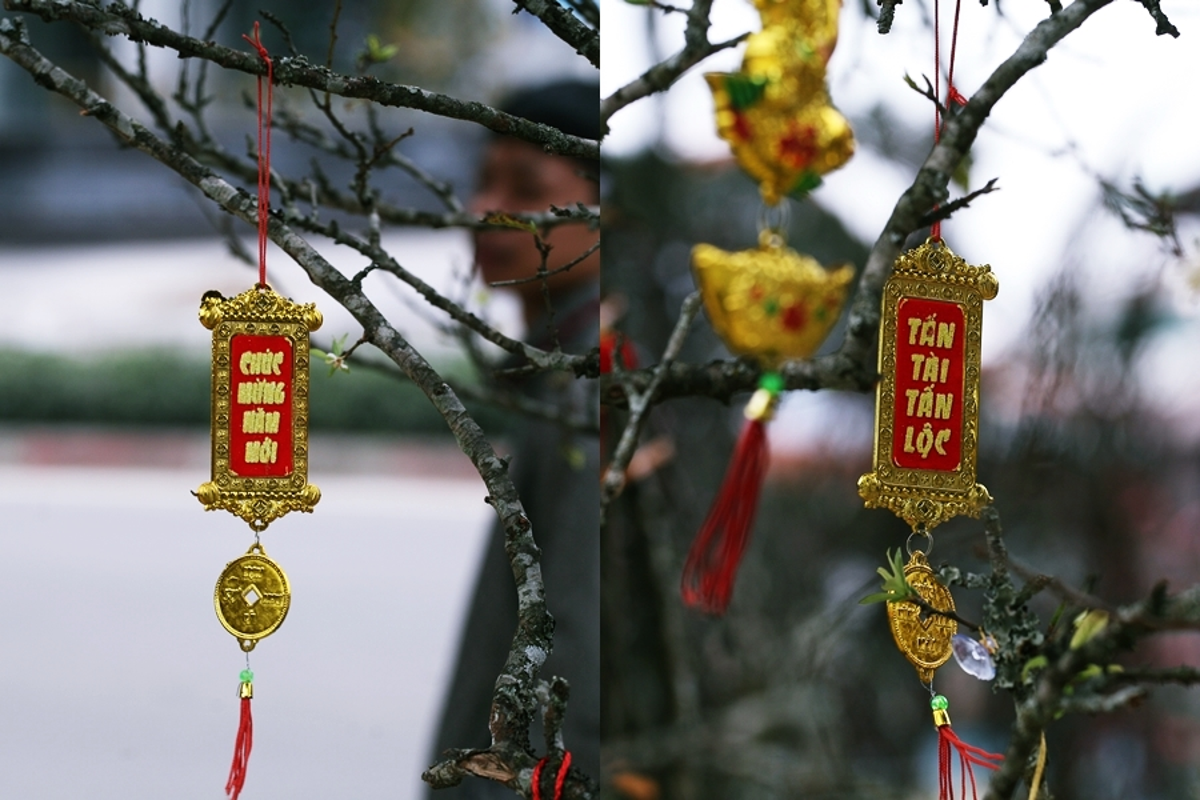 """Man trang Tay Bac """"het"""" gia gan chuc trieu/goc dip Tet Nguyen dan o Thu do-Hinh-10"""