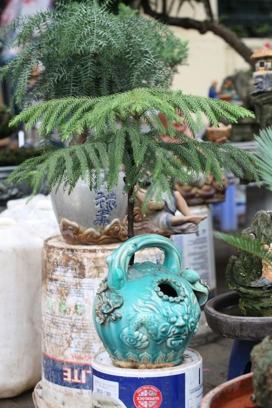 Van tue bonsai choi Tet co truyen gia ca chuc trieu dong/chau-Hinh-10