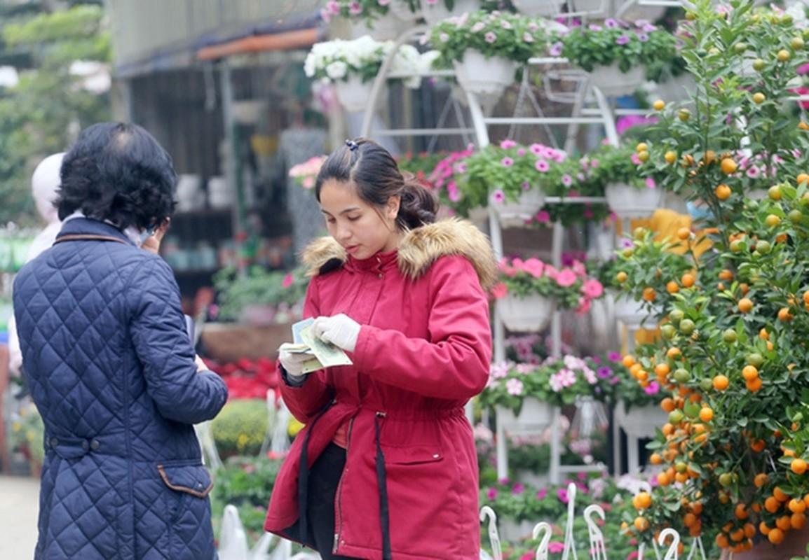 "Nguoi dan Ha Noi ""tranh nhau"" mua cay canh o cho hoa Van Phuc-Hinh-12"
