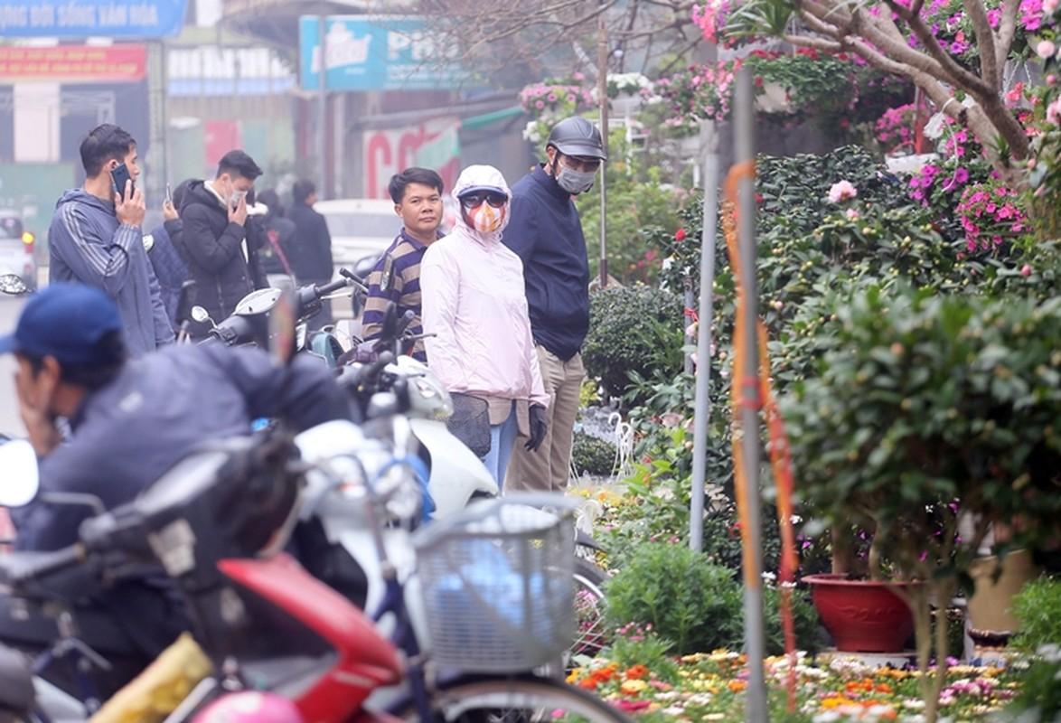 "Nguoi dan Ha Noi ""tranh nhau"" mua cay canh o cho hoa Van Phuc"