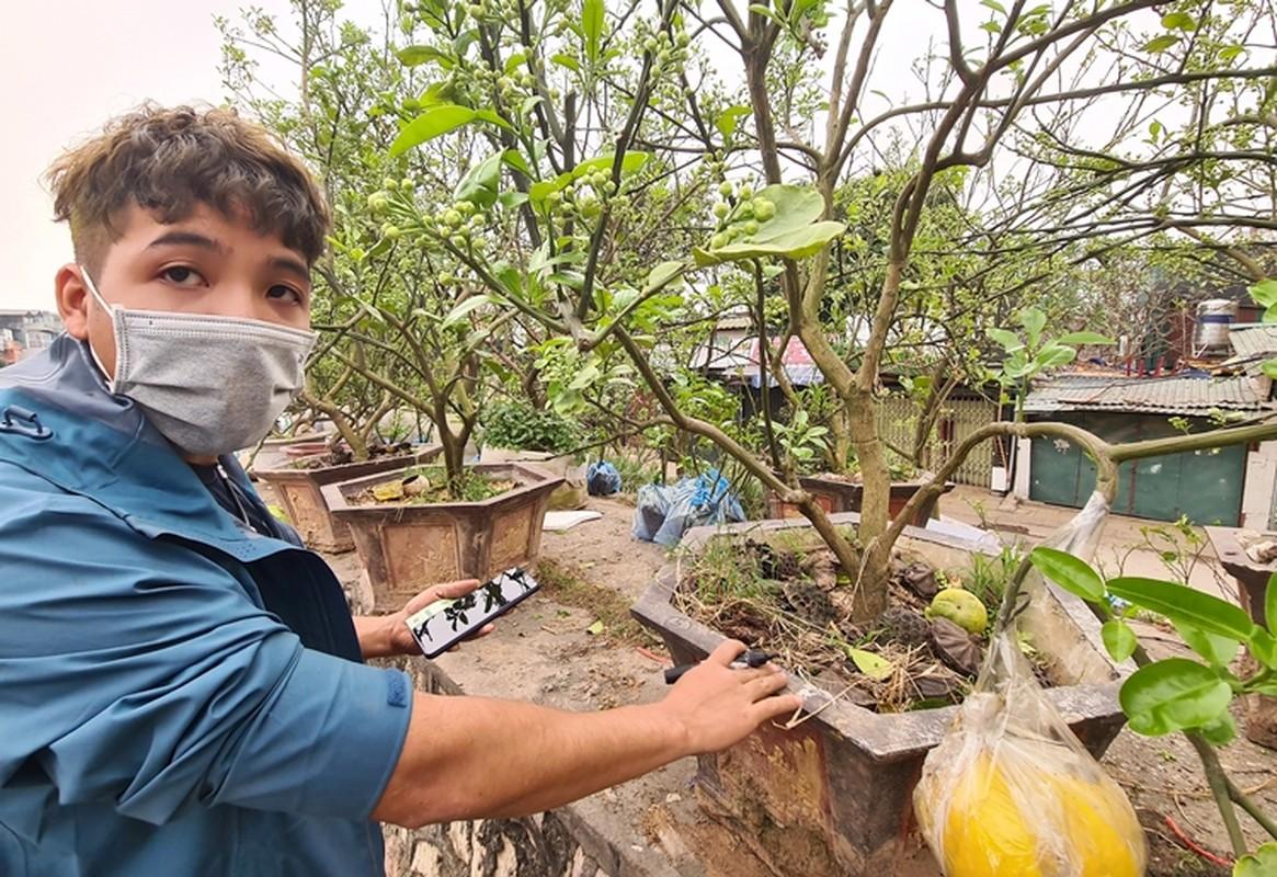 Ha Noi: Buoi canh day nu dat hang sau Tet-Hinh-9
