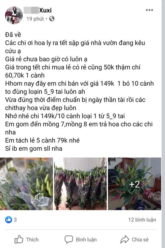 Hoa ly rot gia the tham, bay ban la liet o via he Ha Noi-Hinh-9