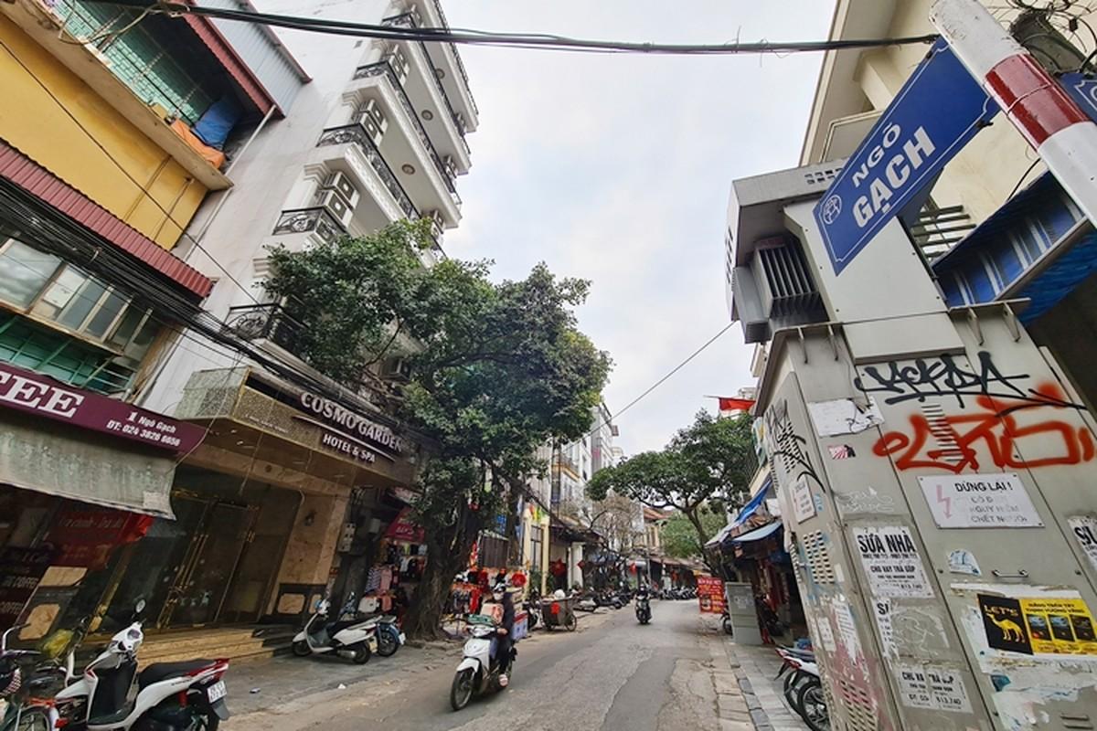 Ha Noi: Loat khach san sang chanh o pho co giam gia, dong cua, rao ban sau Tet-Hinh-4