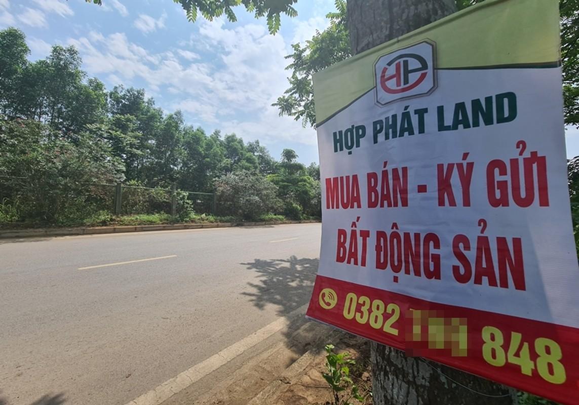 """""""Ma tran"""" quang cao dat nen tren Dai lo Thang Long-Hinh-2"""