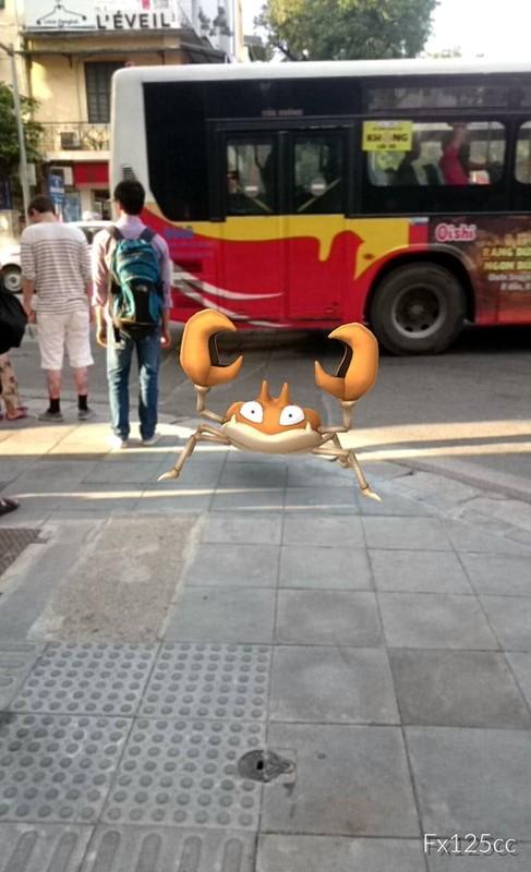 1h sang Bo Ho van tap nap thanh nien di bat Pokemon-Hinh-9