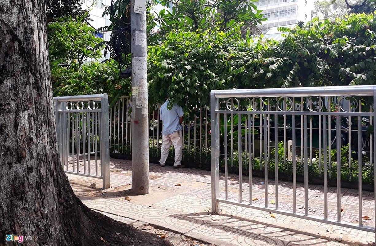Anh: Dai phan cach via he nhu chuong thu o Sai Gon-Hinh-21