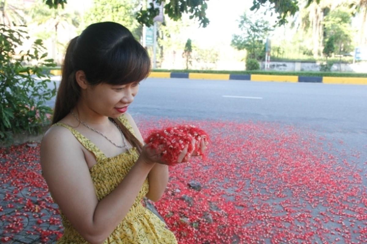 """Me man nhung goc ruc ro o """"thanh pho hoa loc vung""""-Hinh-9"""