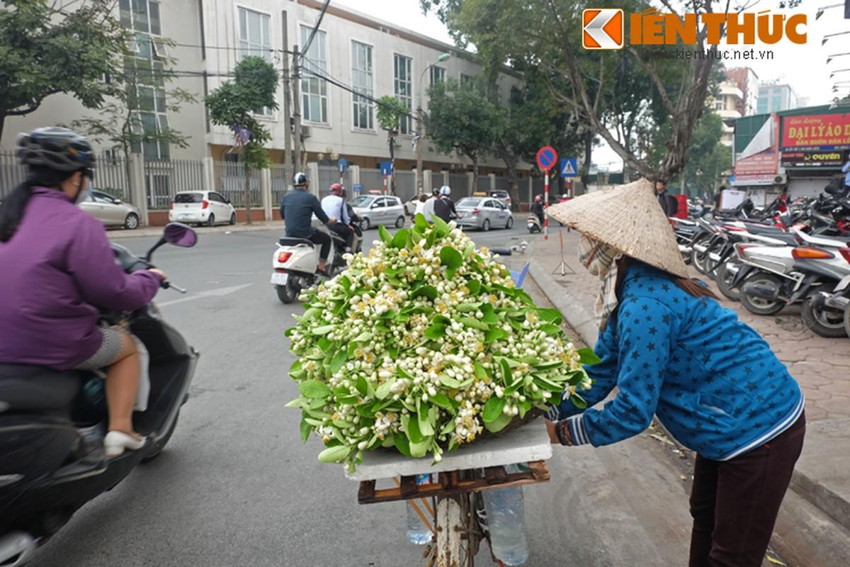 Anh: Nong nan hoa buoi ngat huong pho Ha Noi-Hinh-13
