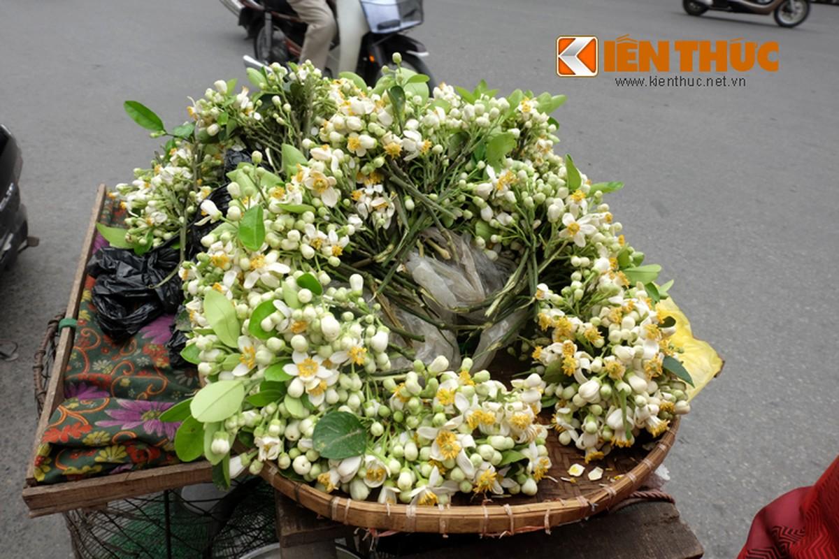 Anh: Nong nan hoa buoi ngat huong pho Ha Noi-Hinh-8