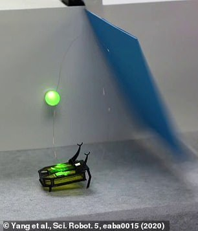 Robot ti hon dau tien tren the gioi chay bang... con-Hinh-10