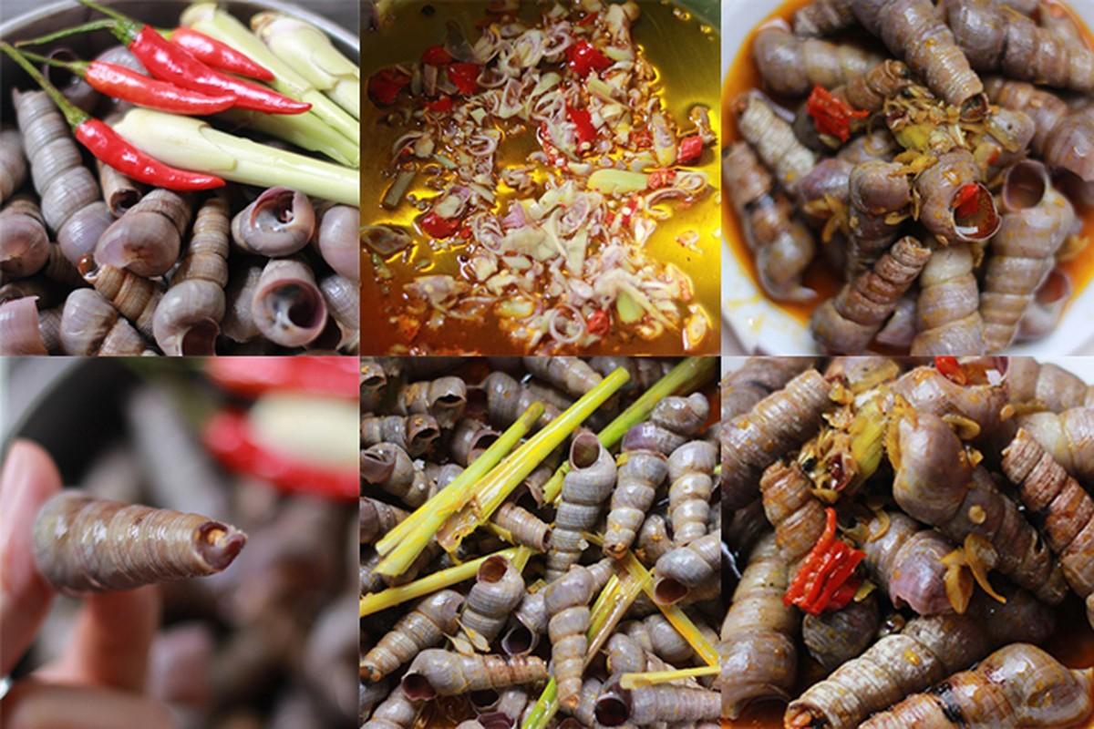 Oc dat kin bien Quang Binh sau bao: Hien tuong la, oc khong la-Hinh-7
