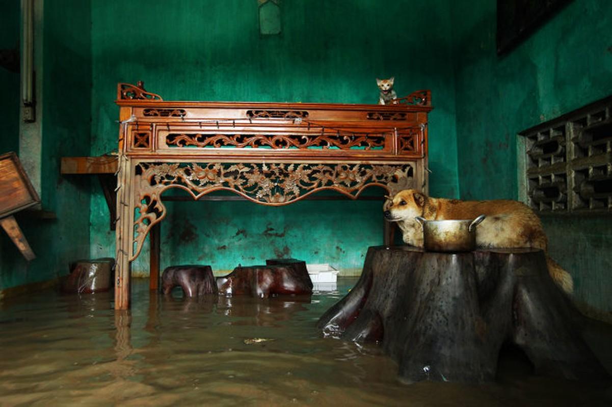 Mua lu o Quang Ninh: Nhung hinh anh dau long khi nuoc rut-Hinh-5