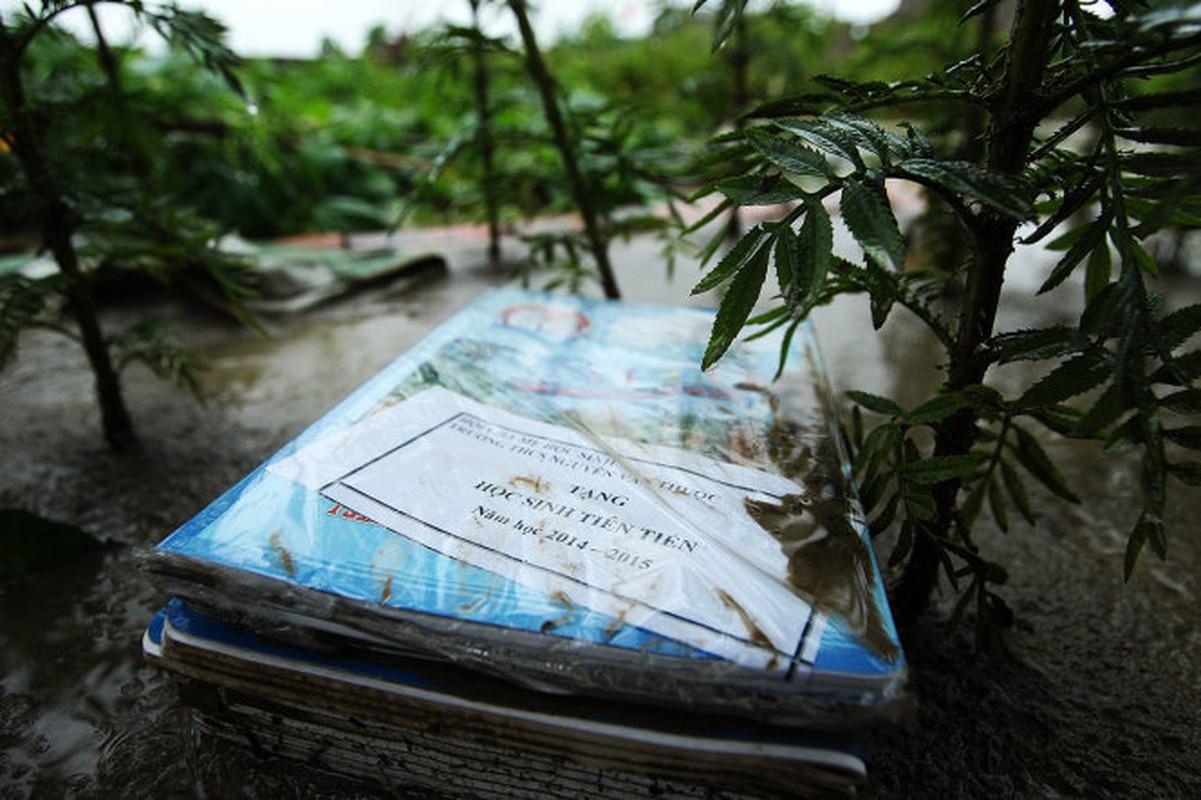 Mua lu o Quang Ninh: Nhung hinh anh dau long khi nuoc rut-Hinh-7