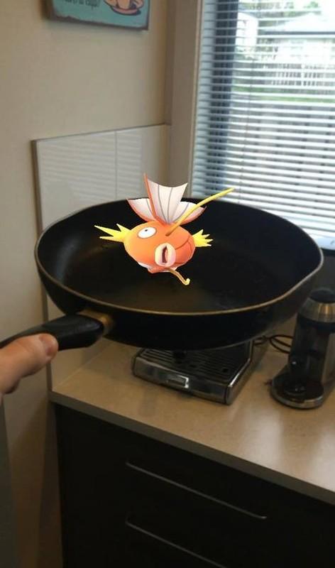 Chet cuoi voi anh che game Pokemon Go cua dan mang-Hinh-8