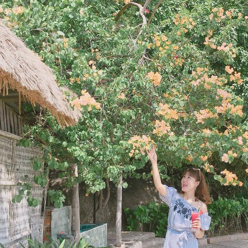 """Gioi tre mai miet check-in """"thien duong song ao"""" o Cam Ranh-Hinh-4"""