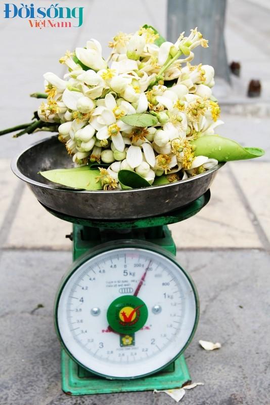 Hoa buoi xuong pho, moi chum hoa dat ngang bat pho-Hinh-10