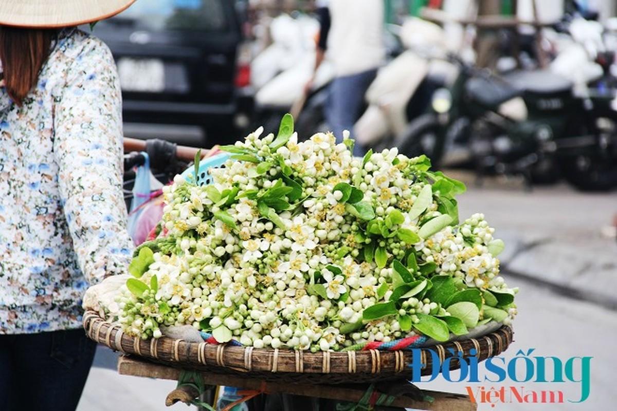 Hoa buoi xuong pho, moi chum hoa dat ngang bat pho-Hinh-14