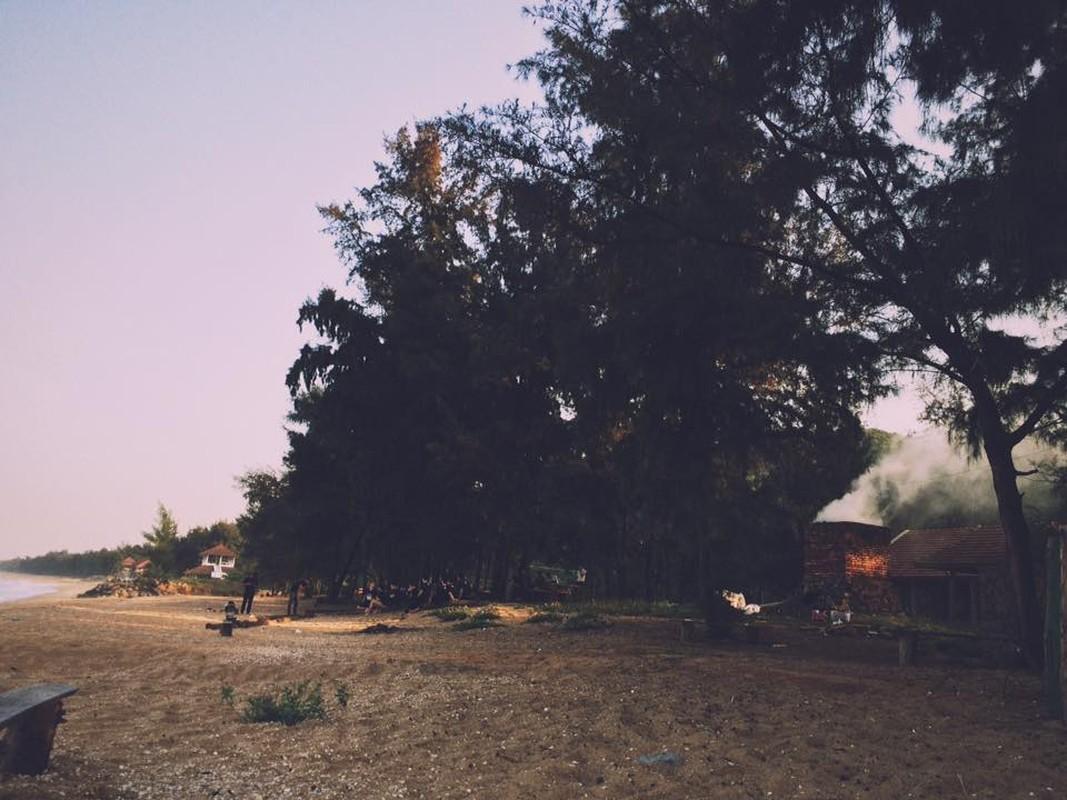Ve Ha Tinh kham pha bai bien dep hoang so-Hinh-8