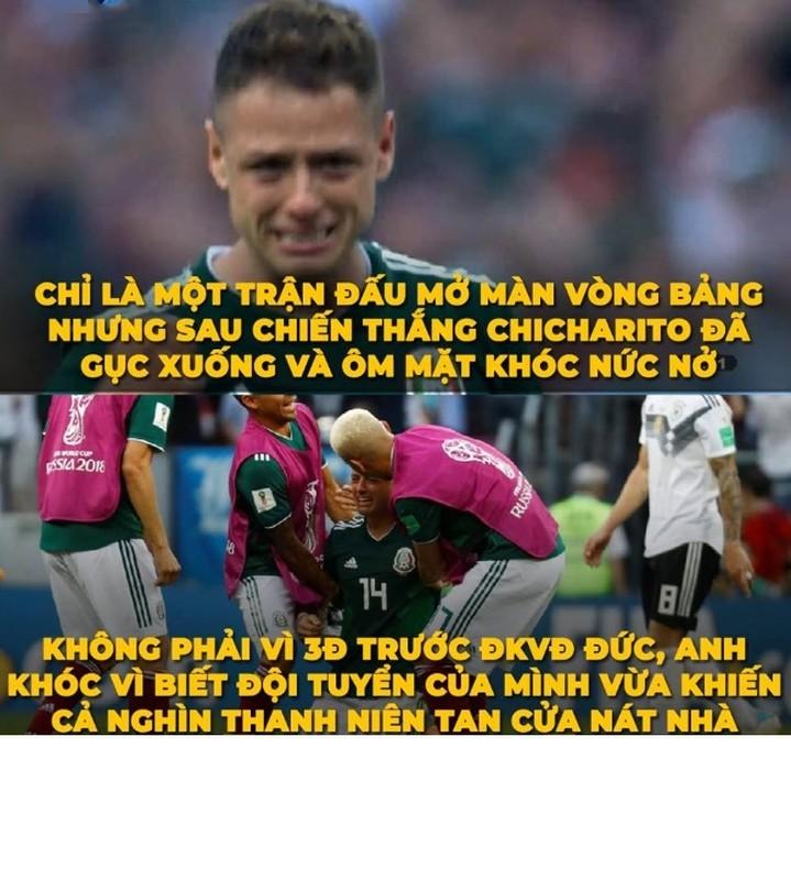 "Chet cuoi voi ""tham kich"" cua dan ca do mua World Cup-Hinh-6"