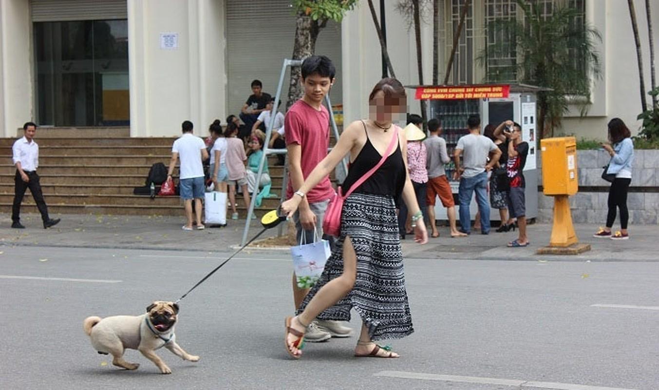 Cam mang cho khong ro mom vao pho di bo ho Guom, dan mang noi gi?-Hinh-10