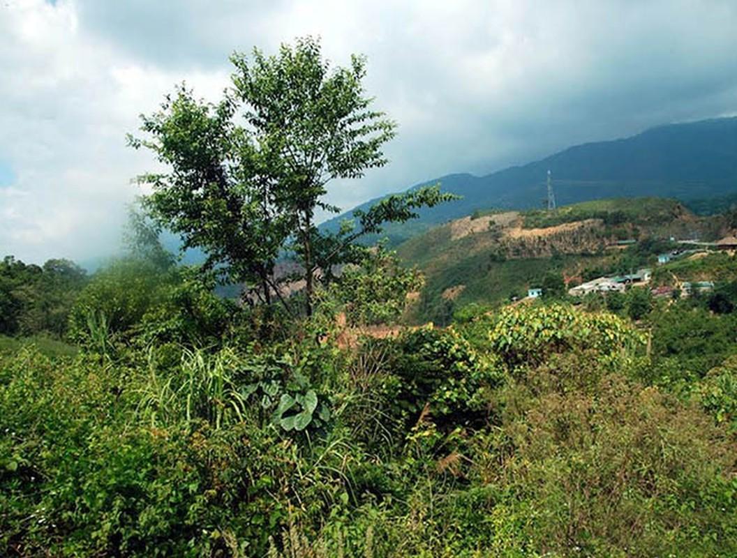Kham pha bat ngo 4 Vuon Di san ASEAN moi tai Viet Nam-Hinh-14