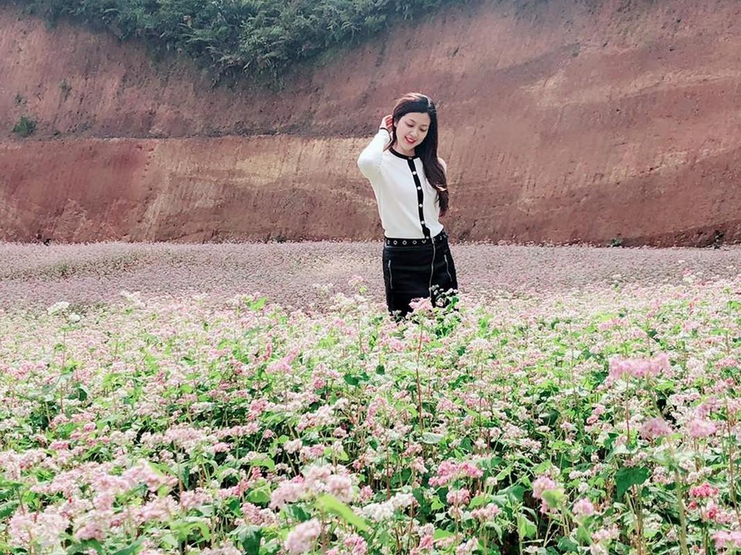 Tranh thu mua hoa man no, nu MC VTV hoa gai H'Mong gay sot mang-Hinh-10