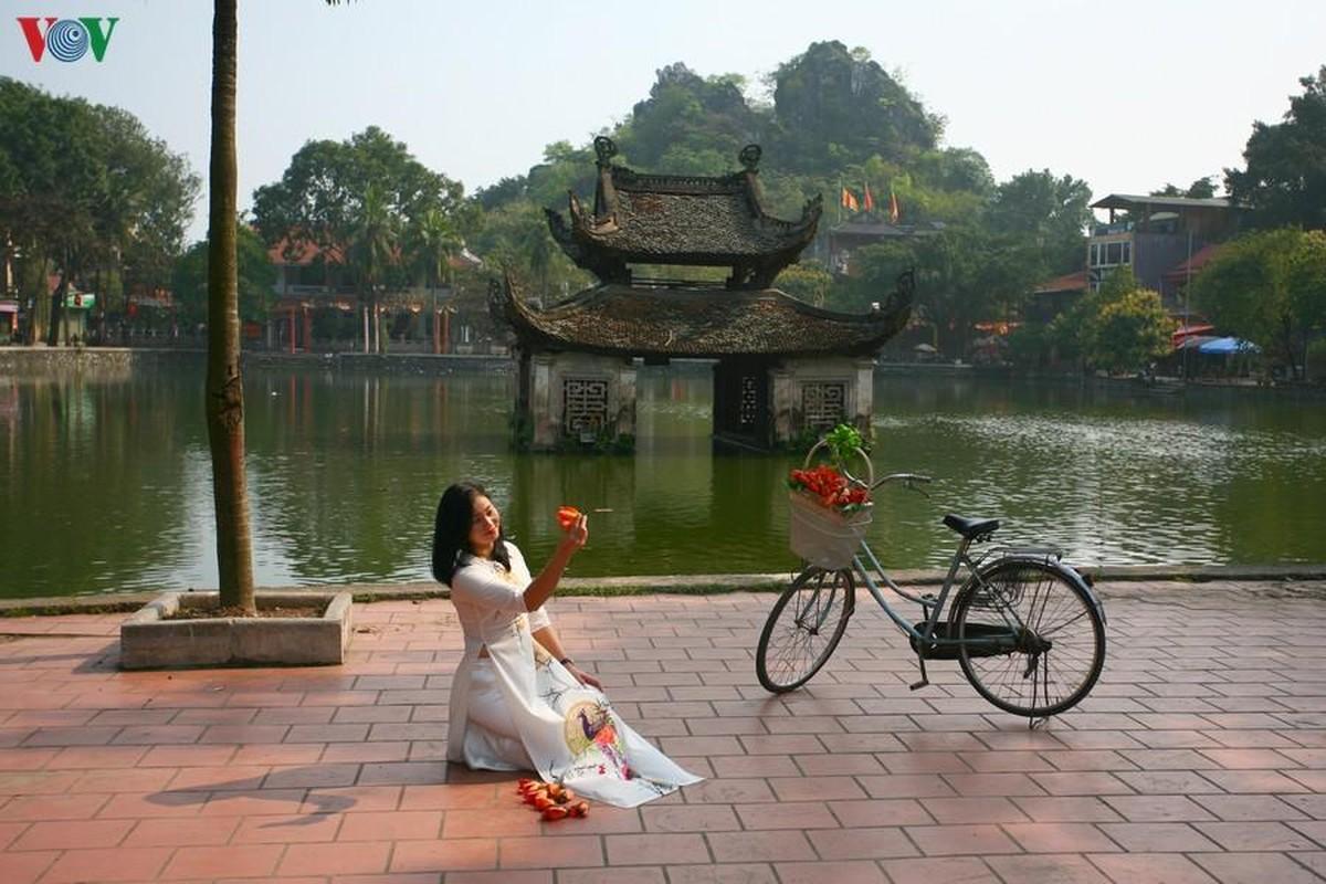 Vi sao cay hoa gao Chua Thay hut khach thap phuong do ve?-Hinh-15