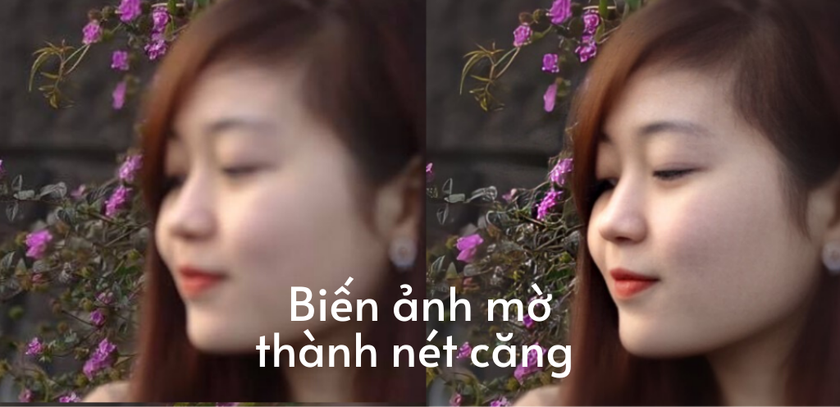 Dan tinh phat sot voi trao luu phuc che anh cu mo thanh net cang-Hinh-9
