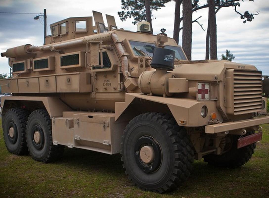 Xe boc thep My dam thang vao thiet giap BTR-80 Nga tai Syria-Hinh-15